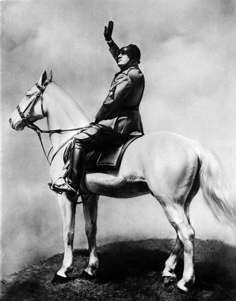 Tout le matériel : le cheval et l'uniforme ...
